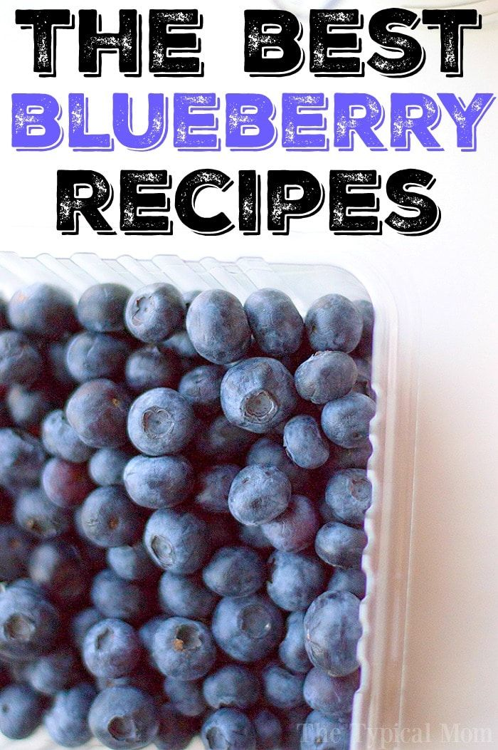Hier sind über 50 der besten Heidelbeer-Rezepte! Von herzhaft bis süß …