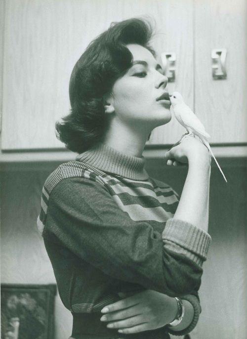 Natalie Wood: Vintage Hollywood, Natalie Woods, Movie Stars, Classic Actresses, Candid Cameras, Natalie Dresses, Canary, Classic Hollywood, Natalie Woodamor