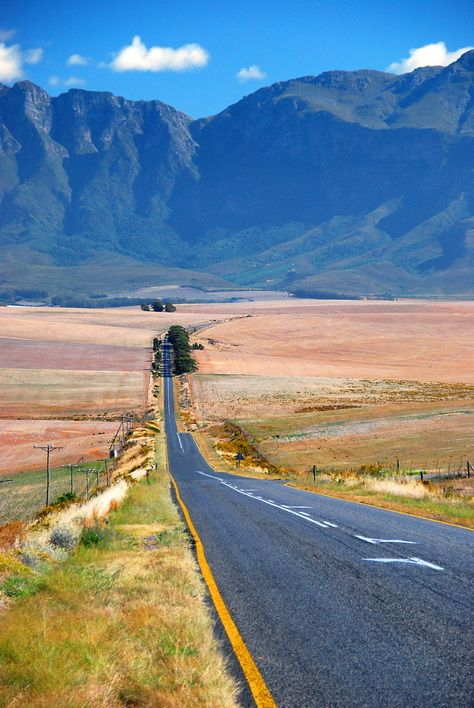A landscape in the Overberg, South Africa.