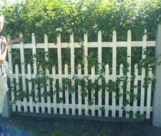 trästaket trädgård - Sök på Google