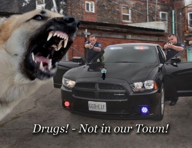 The Rolla, Missouri, Police Department's Incredibly Effective Anti-Drug Campaign  http://www.buzzfeed.com/mjs538/the-rolla-missouris-police-departments-incredibly-effective