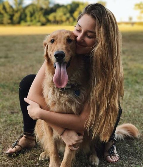 10 Amazing Dog Rescue Groups To Donate To Before The End Of The Year – hundis