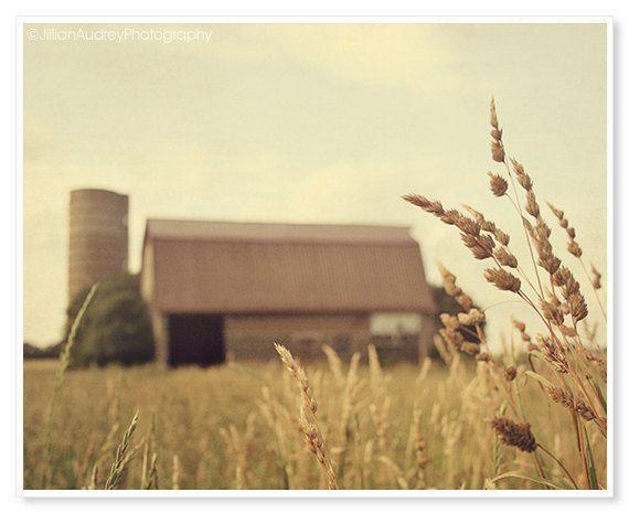 Farm Photography / Nature Photograph / by JillianAudreyDesigns, $30.00