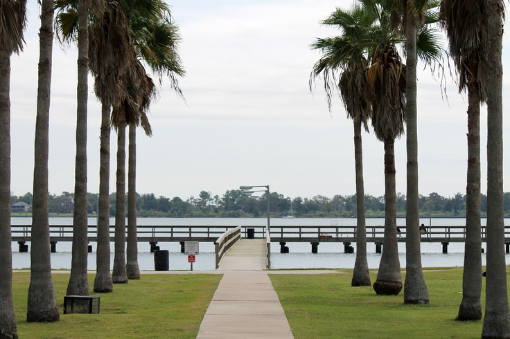 Bay area escorts clear lake texas
