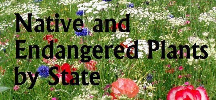 native and endangered by state: the garden geeks