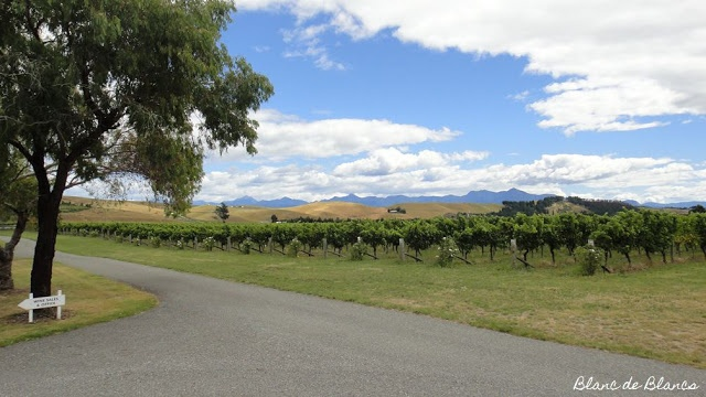7 days until Christmas. I've had enough of the snow, can't I just go someplace warm and sunny, like Marlborough?