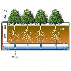 Self-Watering Window Boxes and Water Reservoirs