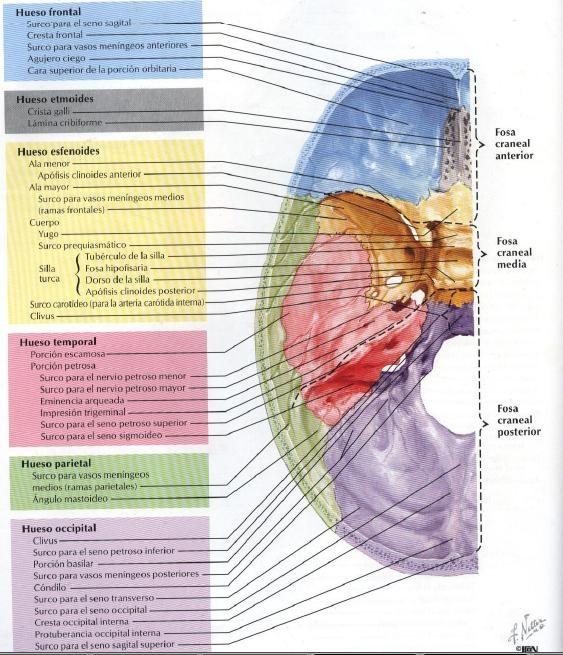 ebook imaging in molecular dynamics 2003