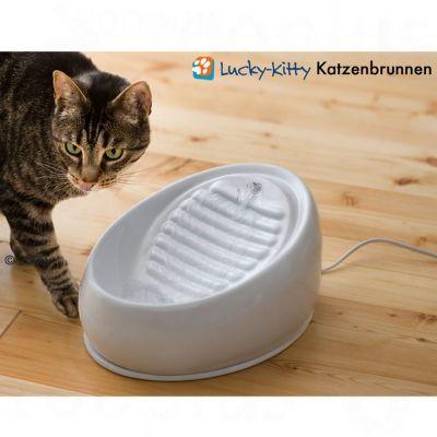Lucky-Kitty poidełko fontanna