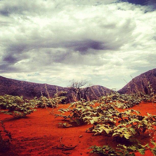 Outback #Australia