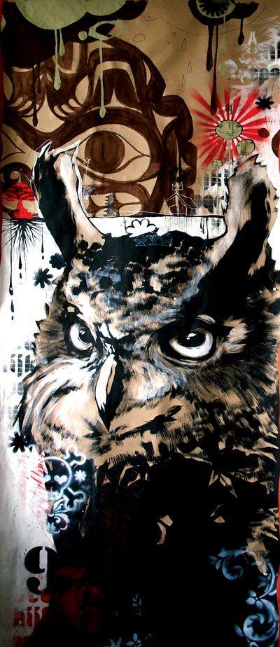 owl - Blaine Fontana