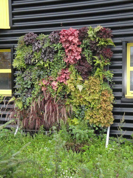 1000 id es sur le th me flowall sur pinterest embellir for Mur vegetal exterieur en kit