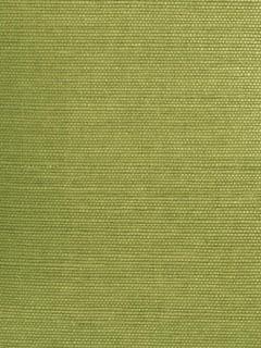 Green Grasscloth Wallpaper   Small Weave   JIANGSU (KENNETH JAMES