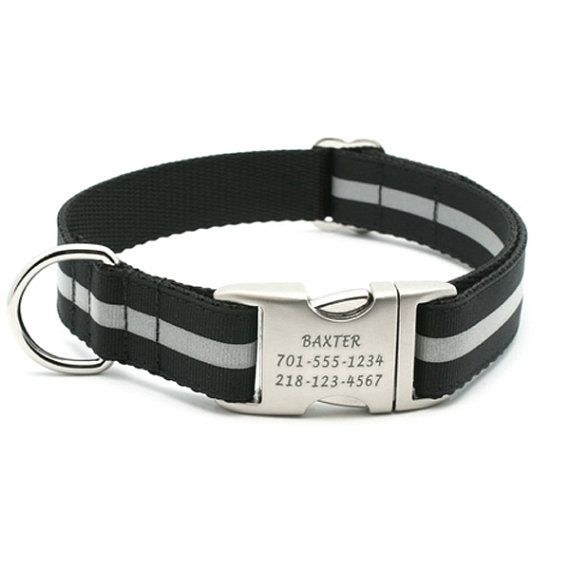 Hey, I found this really awesome Etsy listing at http://www.etsy.com/listing/81285575/reflective-dog-collar-with-laser