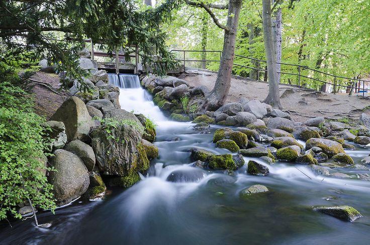 Small waterfall in Oliwski park #photography #gdansk