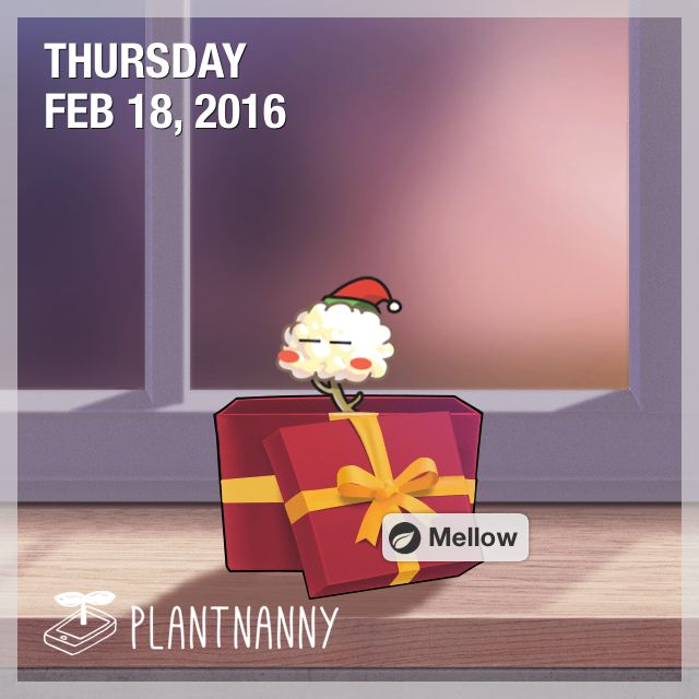 Say hello to my plant! It has absorbed 4,000 ml of water. Get yourself a plant at http://fourdesire.com/outer_link?url=http://itunes.apple.com/app/id590216134&l=en_ID&m=56C5E847