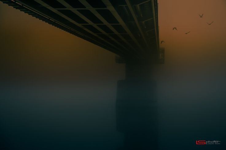 """Mystic - A foggy morning as the birds fly under the bridge. It was a mystical vision.  If you like this work please me a Like, or write a Comment, or Share, or Follow :)  <a href=""""http://www.studiots.co.uk/Laszlo_Som/Laszlo_Som.html"""">http://www.studiots.co.uk/Laszlo_Som</a>   <a href=""""http://foto4you.hu/"""">http://foto4you.hu</a> Laszlo Som"""