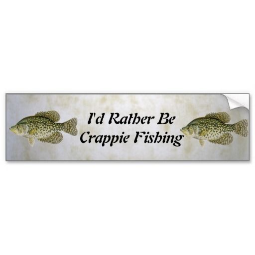 26 best images about crappie fishing tips on pinterest for Crappie fishing secrets
