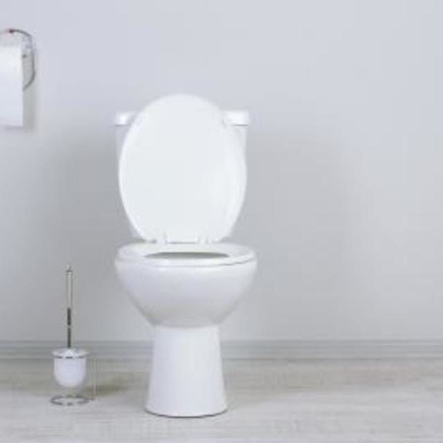 Mold In Toilet Bowl Causes.What Are The Causes Of Mold In A Toilet ...