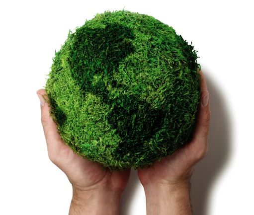 5 Simple Ways to Help Save Mother Earth:  From buying organic food to making your own compost – sustainable living is really not as hard as you think