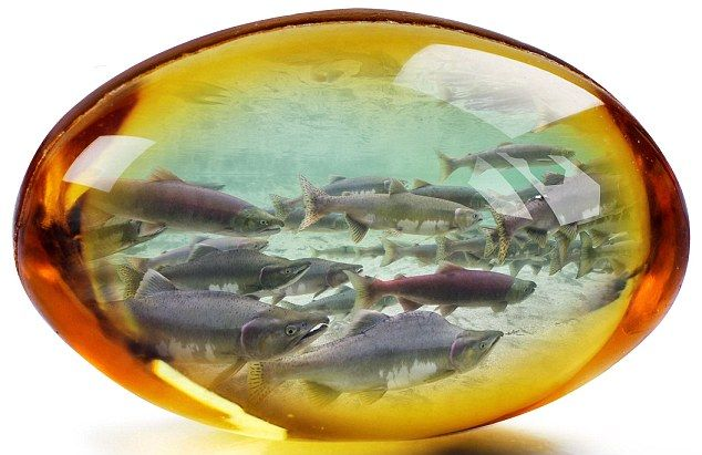 Something fishy: The health benefits gleaned from the fatty acids of our underwater friends are wide-ranging