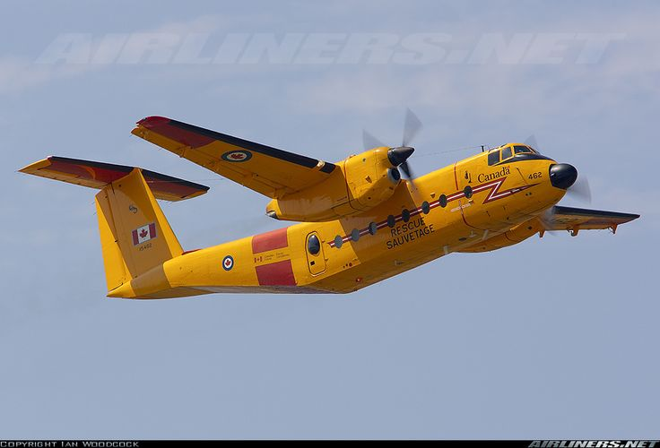 De Havilland Canada CC-115 Buffalo (DHC-5) - Canada - Air Force | Aviation Photo #1088147 | Airliners.net