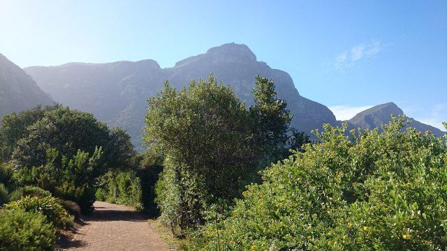 Kirstenbosch National Park. Cape Town, South Africa. By Talia Souki.