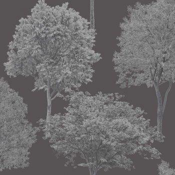Fine Decor Woodland Trees Wallpaper Black / Silver (FD40668) - Fine Decor from I love wallpaper UK