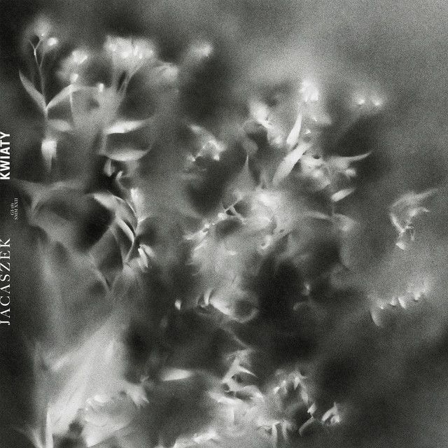 """Daffodils"" by Jacaszek was added to my Likes playlist on Spotify"
