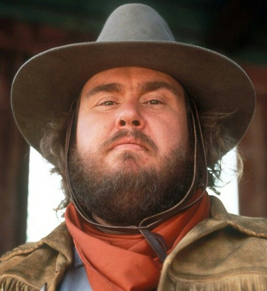 Image result for john candy wagons east