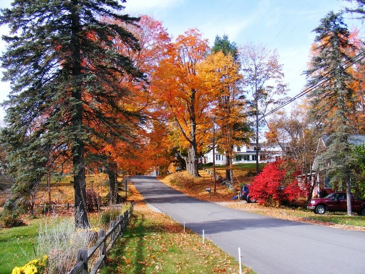 Maple Street, East Andover, NH.