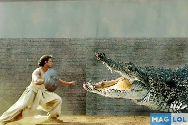 Hrithik Roshan will fight with a big crocodile in his upcoming film 'Mohenjo Daro'. Apart from this, he will also do some other breathtaking action sequences.