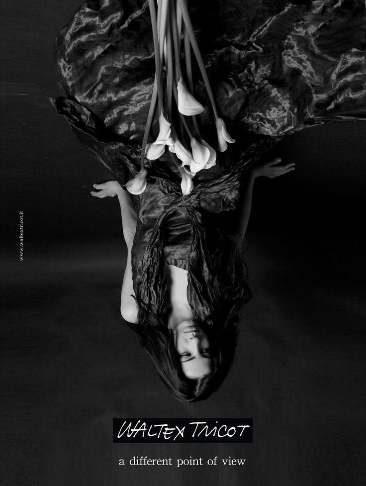 photo &graphic design elisabetta scarpini, waltex tricot advertising