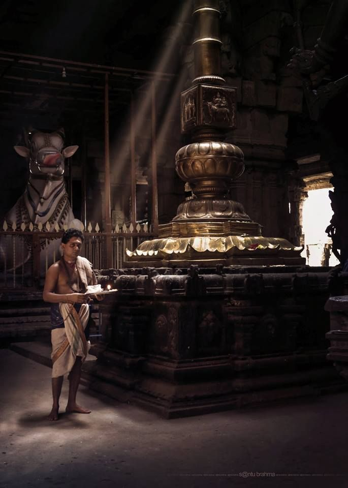 Hindu priest in traditional dress shot from Nellaiappar Temple, one of the famous Shiva Temples situated at the heart of Tirunelveli, Tamil Nadu, photo by Santu Brahma