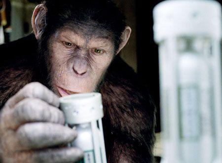 猿の惑星:創世記(ジェネシス) - Yahoo!映画
