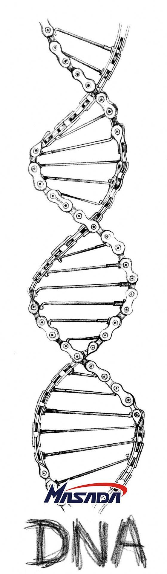 #DNA!  #Motorcycles