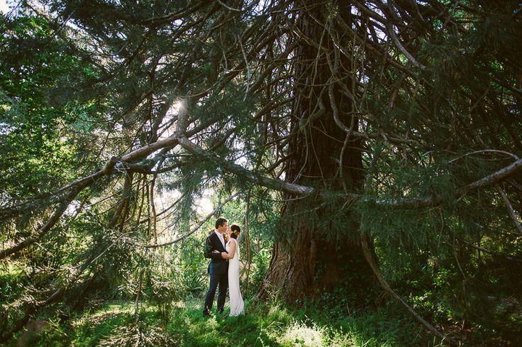 The trees at Bringalbit homestead are magical. Katie and Luke.  http://shaunguestphotography.com.au/portfolio/bringalbit-wedding/
