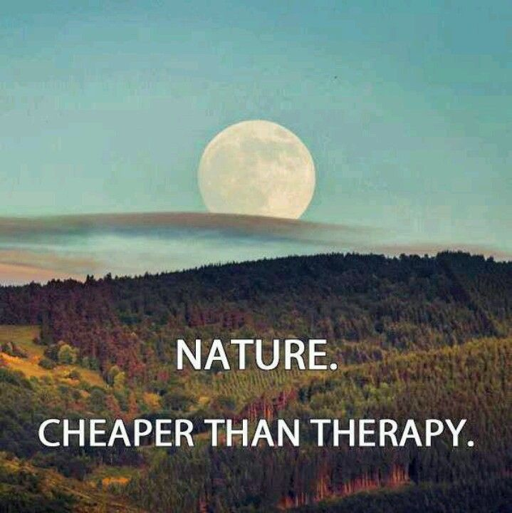 Nature Quotes Inspirational: 1000+ Images About Camping And Travel Quotes On Pinterest