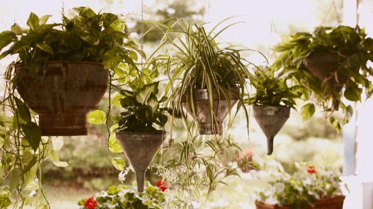 62 Best Hanging Basket Shade Part Sun Images On Pinterest