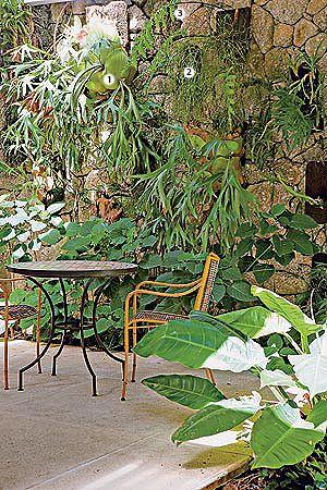 Soluções para muros no jardim