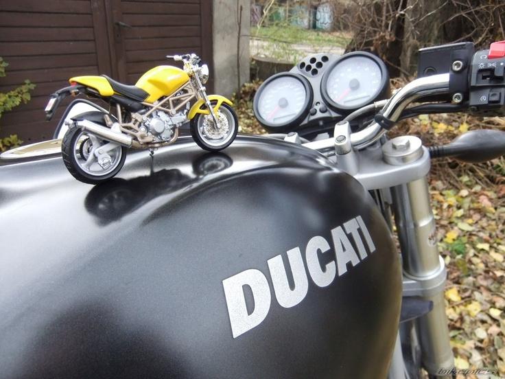 Ducati Monster 620 & 900