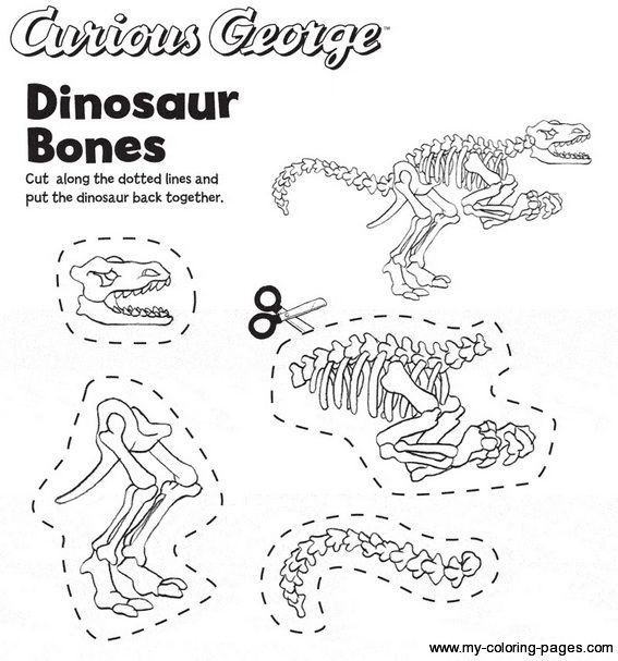 75 best images about dinosaurs on pinterest activities preschool dinosaur and baby dinosaurs. Black Bedroom Furniture Sets. Home Design Ideas