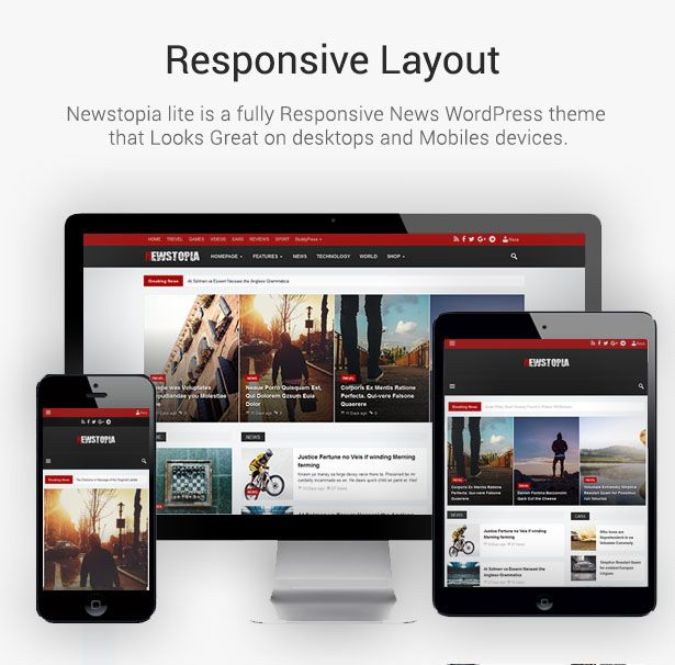 Download Newstopia –  WordPress Blog Magazine Theme (News / Editorial)