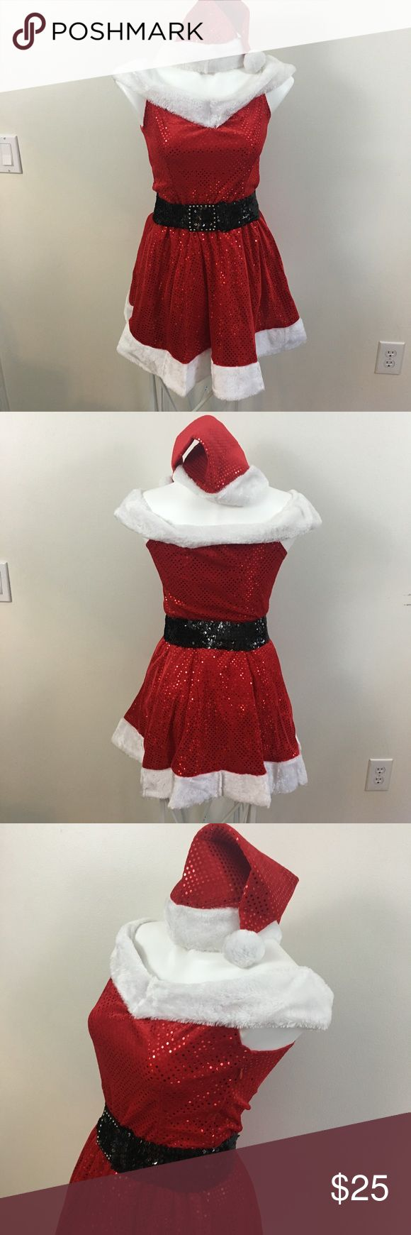 Sexy Santa Dress Sexy Santa dress, includes hat belt and dress, zipper on the side, brand new in the package Dresses