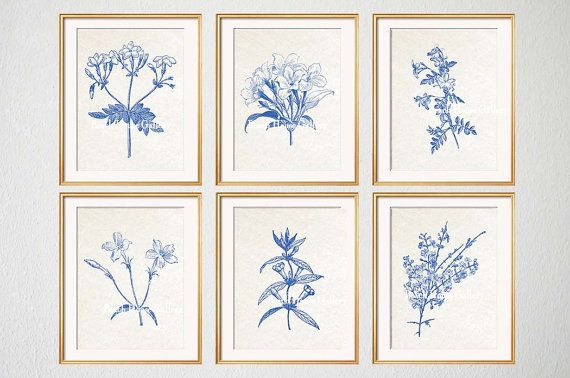 Blue Botanical Prints, Blue Wall Art, Botanical Prints, Botanical Plates, Jasmine, Jasmine Prints, Floral, Wall Art, Set of 6 Prints