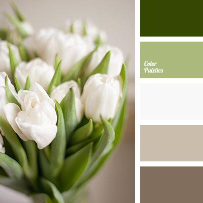 Color Palette #3754