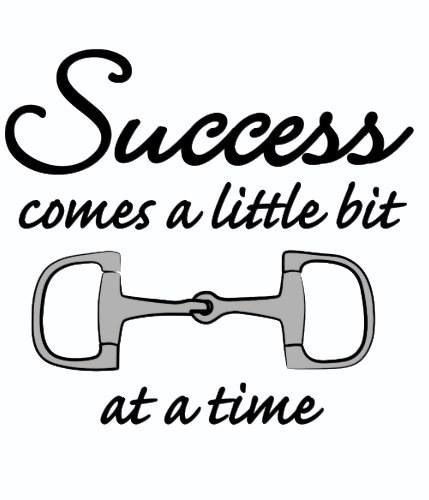 "Success comes a little ""bit"" at a time.                                                                                                                                                                                 More"