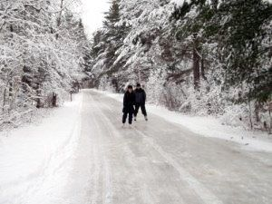 Stay in your own cottage at Algonquin Woods, close to snowshoeing, skating, downhill/cross country skiing...and of course..dog sledding!