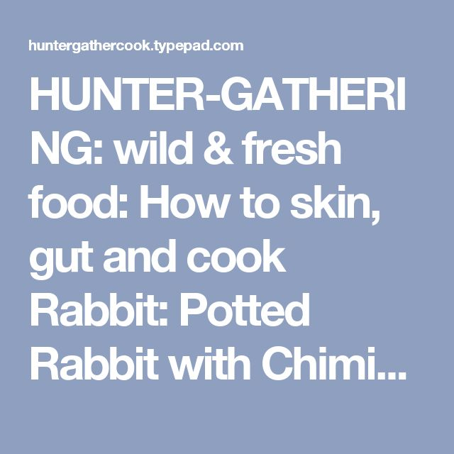 HUNTER-GATHERING: wild & fresh food: How to skin, gut and cook Rabbit: Potted Rabbit with Chimichurri