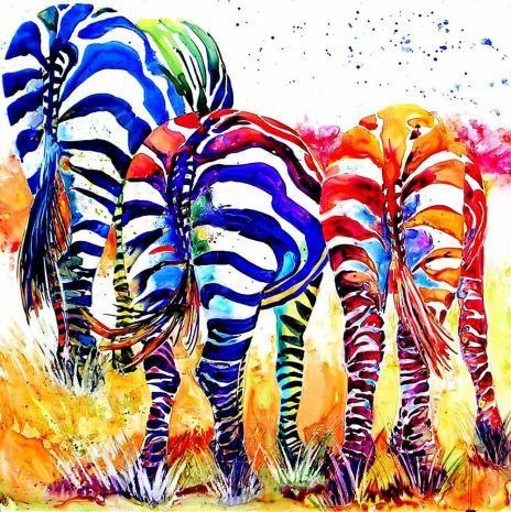 1000 Ideas About Rainbow Zebra On Pinterest Hippy Art